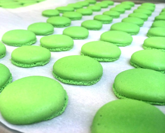 macaroon green